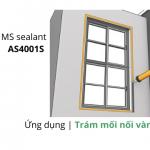 MS sealant. tram vanh dai cua