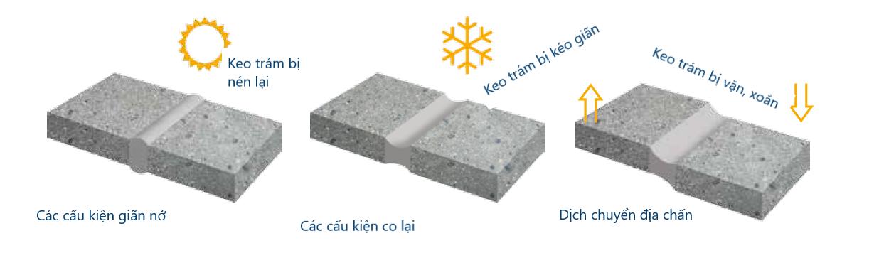 Biến dạng của keo và khe nối theo biến thiên nhiệt độ